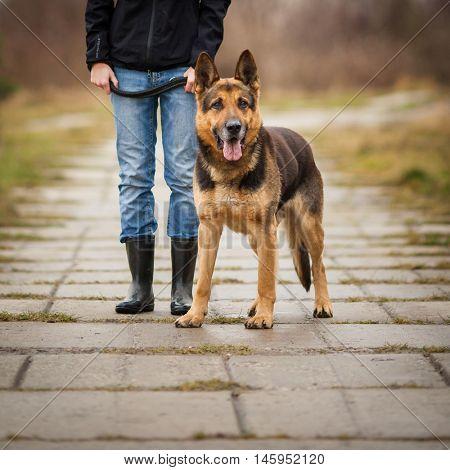 Master and her obedient (German shepherd) dog