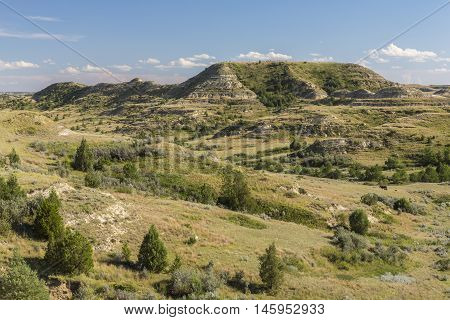 A scenic badlands landscape during the summer.