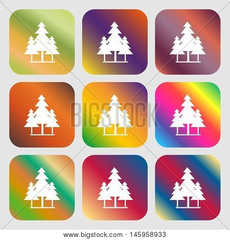 Christmas Tree Icon . Nine Buttons With Bright Gradients For Beautiful Design. Vector