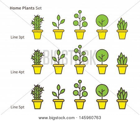 House Plants Linear Vector Illustration