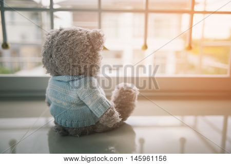 Lonely Teddy bear, Lonely teddy bear in the home