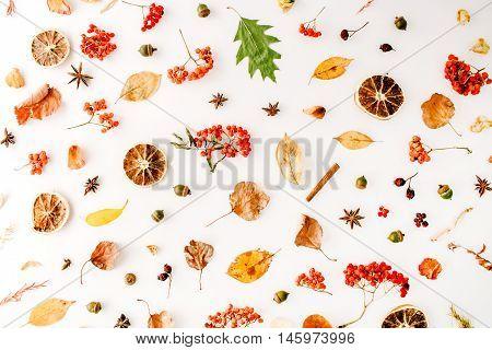 autumn fall flat lay top view creative pattern arrangement.