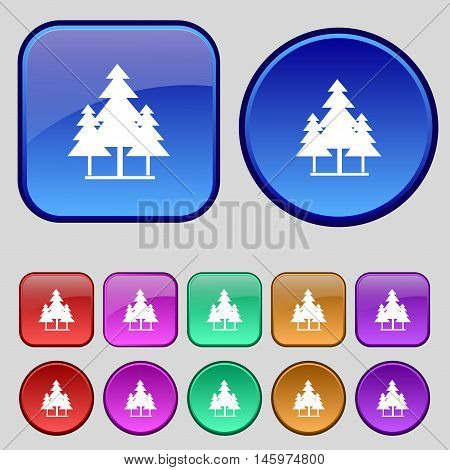 Christmas Tree Icon Sign. A Set Of Twelve Vintage Buttons For Your Design. Vector