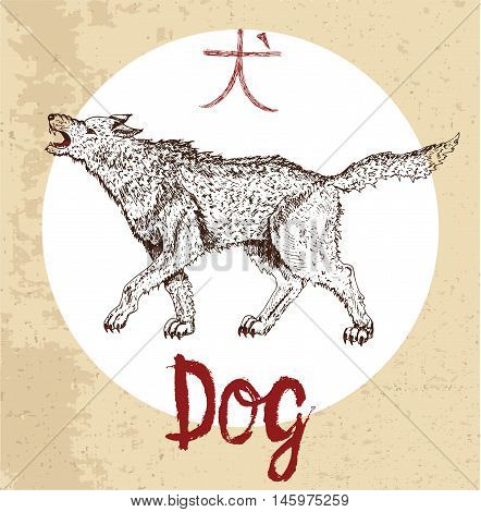 Chinese zodiac symbol of hand drawn Dog with lettering. Horoscope and astrological vector sign of asian new year calendar. Graphic drawing with engraved animal. Chinese hieroglyph means Dog