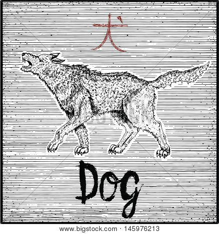 Engraved illustration of zodiac symbol with Dog and lettering. Horoscope and astrological vector sign of asian new year calendar. Graphic line art with animal. Chinese hieroglyph means Dog