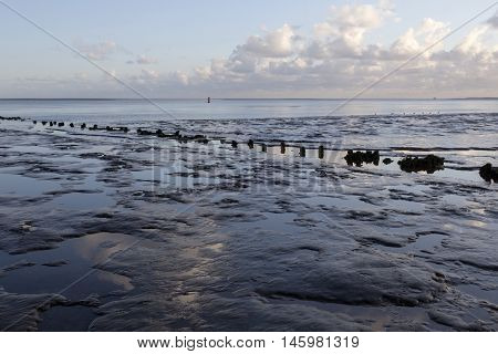 muddy shore of dutch waddenzee at low tide on Vlieland at dusk