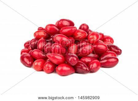 Pile Cornelian Cherry