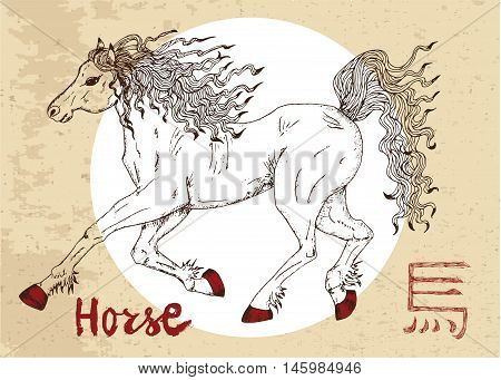 Chinese zodiac symbol of hand drawn horse with lettering. Horoscope and astrological vector sign of asian new year calendar. Graphic drawing with engraved animal. Chinese hieroglyph means Horse