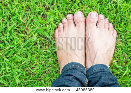 Foot wear jeans on the green grass in the sunshine morning
