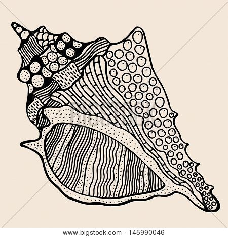 Sea Shell with abstract pattern. Vector illustration. Hand drawn Doodle artwork. Black, beige color