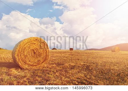 Hay bales on the field after harvest a clear day. Blue sky white clouds. Sun sun haze glare.