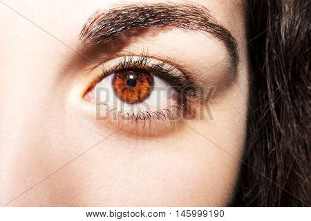 A beautiful insightful look brown woman's eyes
