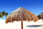 Beach Traditional Sunroof Hut Caribbean Umbrellas