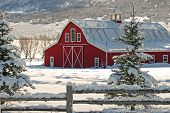 picture of red barn  - Large red barn in the mountains with fresh winter snow - JPG