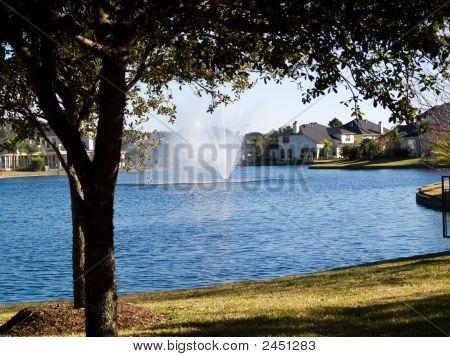 Tree Frame Fountain