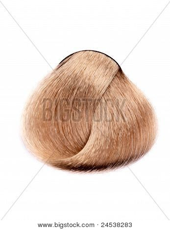 A Lock Of Hair