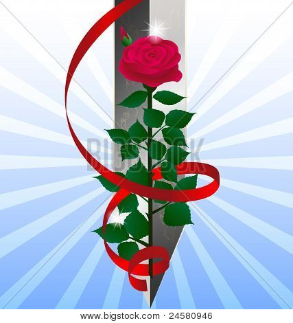red rose and sword