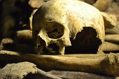 pic of catacombs  - skull and bones in creepy Catacombs in Paris - JPG