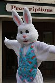 image of buck teeth  - easter bunny trying to sale prescriptions at store - JPG