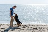 Young Caucasian Boy Playing With Dog On Beach. Man And Dog Having Fun On Seaside poster