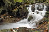 forest waterfall on Silver river  - Jesenik mountains - Czech republic