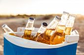 Close up of beer bottles cooling in an icebox at the beach poster