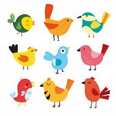 Birds Character Vector Design, Birds Vector Collection poster
