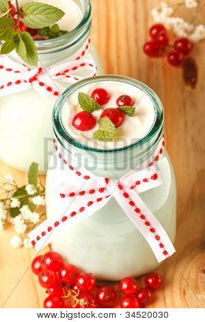 Redcurrant yoghurt with peppermint