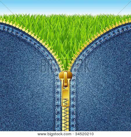 Zipper open on denim texture. Green grass. eps 10