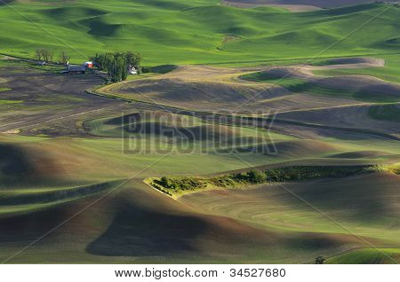 Farm and Rolling Hills