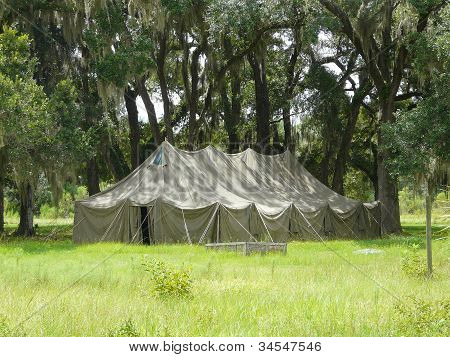 Large Tent In The Oaks