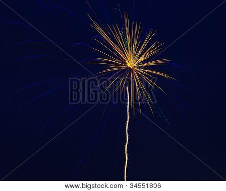 Single Amazing Firework
