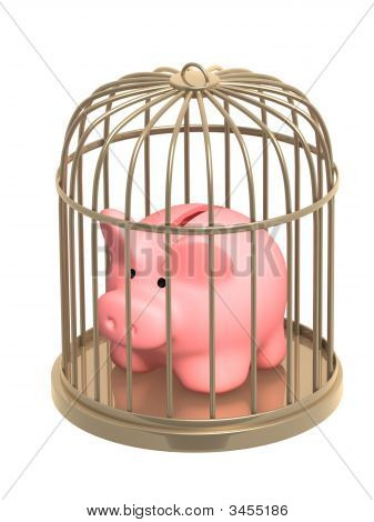 Piggy Bank Closed In A Cage