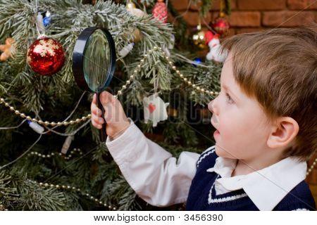 Exploring Christmas Tree