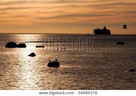 Cruise Lliner Silhouette