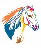Colorful Decorative Contour Portrait Of Grace Running Horse With Long Mane, Looking  In Profile. Vec poster