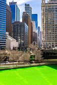 Chicago Skylines building along green dyeing river of Chicago River on St. Patrick day festival in C poster