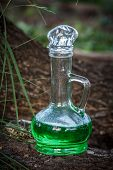 Glass Vessel With Green Herbal Potion In The Woods On The Trunk Of Tree poster