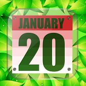 January 20 Icon. For Planning Important Day With Green Leaves. Banner For Holidays And Special Days. poster