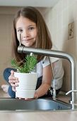 Little Child Holding A Pot With Rosmarinus Officinalis (rosemary). Nurturing And Watering Young Gree poster