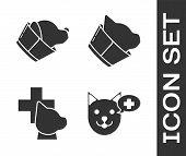 Set Veterinary Clinic Symbol, Veterinary Clinic Symbol, Veterinary Clinic Symbol And Veterinary Clin poster