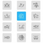 Vector Illustration Of 12 Marine Icons Line Style. Editable Set Of Sailor Man, Sunset In The Sea, Sh poster