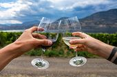 Outdoor Wine Drinking And Tasting Tour, Winery Farm Houses And Vineyards Visit, Man And Woman Couple poster