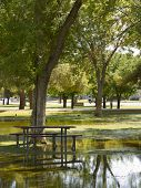 picture of cortez  - Standing rain water around picnic table during summer monsoon season - JPG