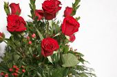 image of quinceanera  - Dozen of Red Rose Bouquets on a white backdrop - JPG