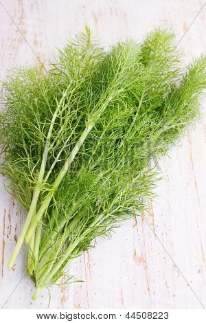 Bunch Of Fresh Fennel