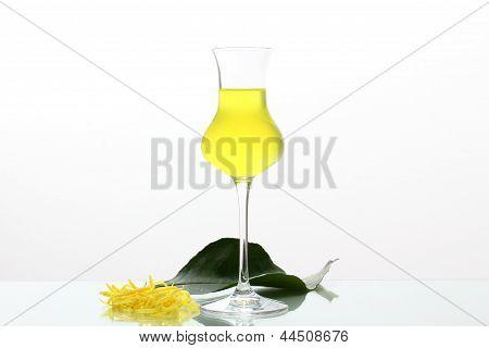 limoncello cocktail with lemon
