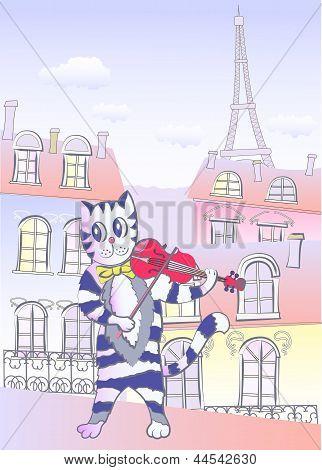 Cat The Violinist In Paris