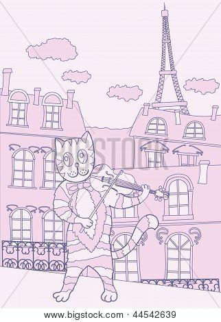 Cat The Violinist In Pink Paris