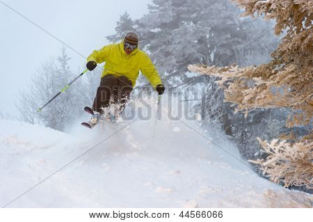 Expert Skier On A Powder Day.